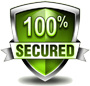 icon security green